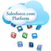 Salesforce Application Review Paper